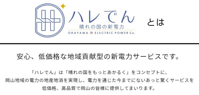 宮崎県延岡市の地域新電力会社創業事業計画策定業務について