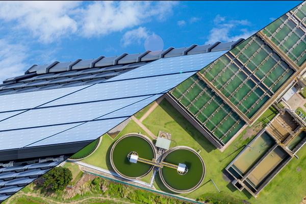 バイオマス再生エネルギー